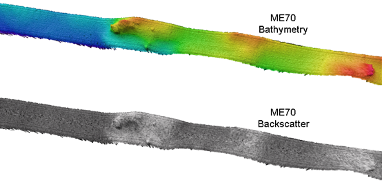 Image comparing bathymetry and backscatter.