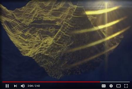 Still from the video showing a visualization of sonar highlighting the seafloor.